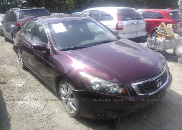 Inventory #626782343 2010 Honda ACCORD