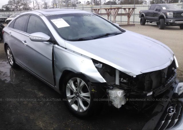 Inventory #815926285 2013 Hyundai SONATA