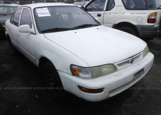 Inventory #170491325 1997 Toyota COROLLA