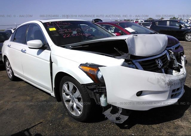 Inventory #282701036 2010 Honda ACCORD