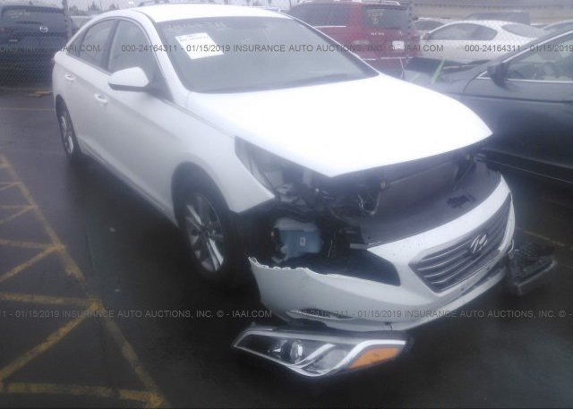 Inventory #848139534 2016 Hyundai SONATA