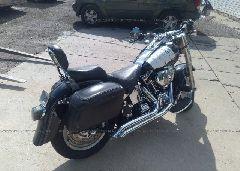 2006 Harley-davidson FLSTFI - 1HD1BXB106Y028581 rear view