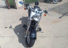2006 Harley-davidson FLSTFI - 1HD1BXB106Y028581 close up View