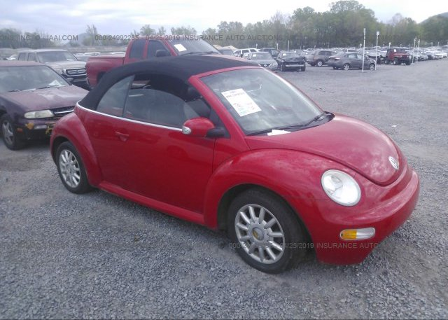 Inventory #815850096 2004 Volkswagen NEW BEETLE