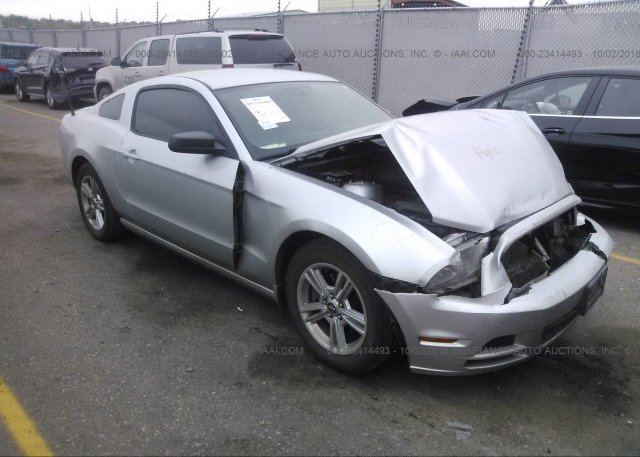 Inventory #313398648 2013 FORD MUSTANG