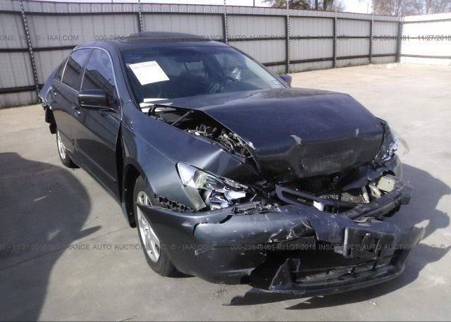 Inventory #530419428 2005 Honda ACCORD