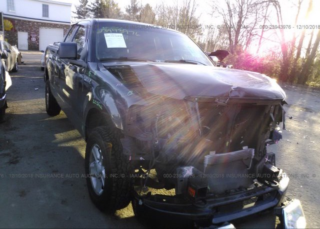 Inventory #333794546 2005 FORD F150