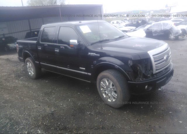 Inventory #607387468 2011 FORD F150