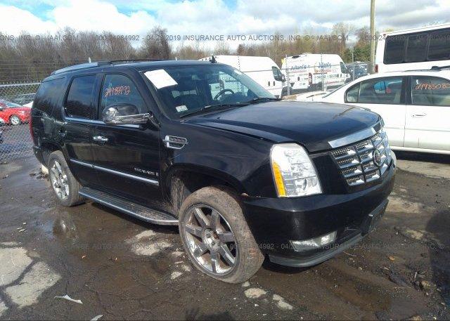 Inventory #509673379 2007 Cadillac ESCALADE