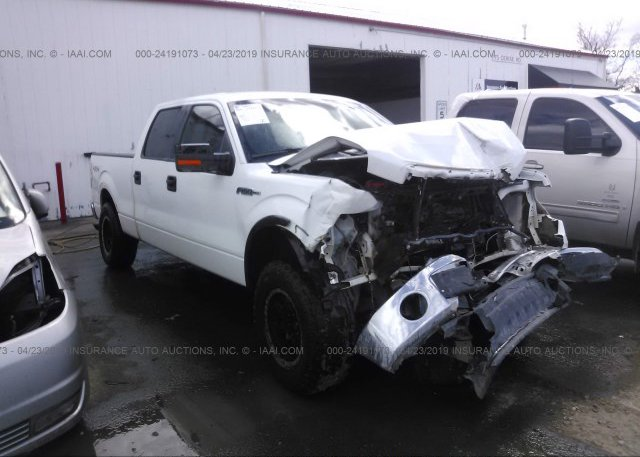 Inventory #461814881 2010 FORD F150
