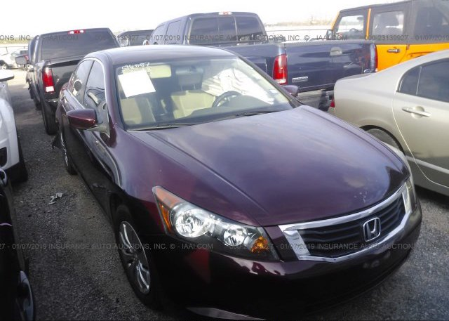 Inventory #700684526 2010 Honda ACCORD