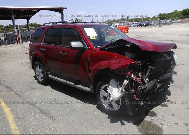 Inventory #845276141 2011 FORD ESCAPE