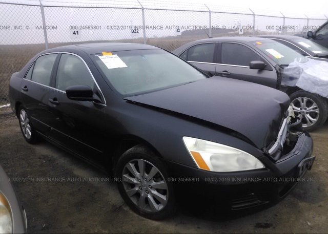 Inventory #654694030 2006 Honda ACCORD