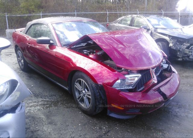 Inventory #498617750 2011 FORD MUSTANG