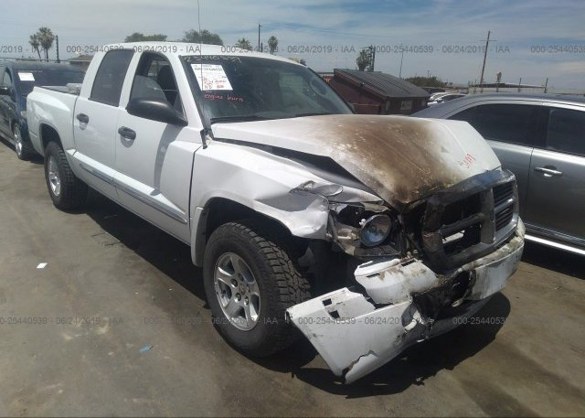 Inventory #402549434 2005 Dodge DAKOTA