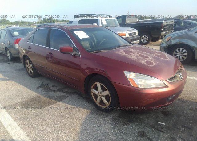 Inventory #892256472 2003 Honda ACCORD