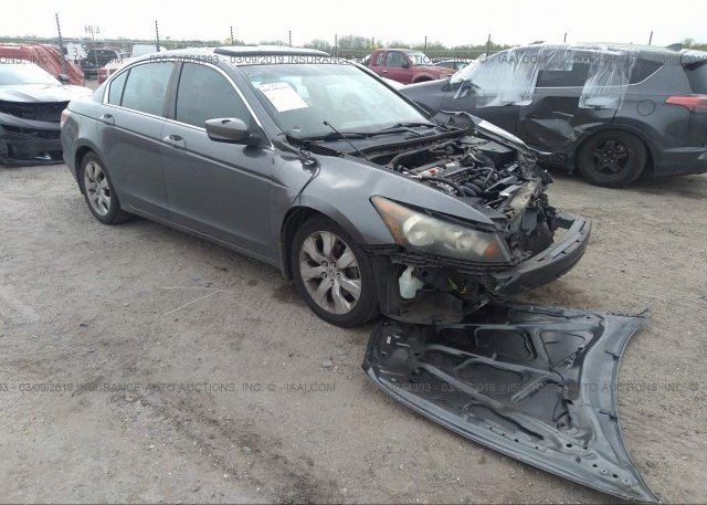Inventory #461627751 2010 Honda ACCORD