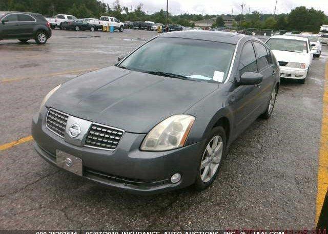 Inventory #256681185 2005 Nissan MAXIMA