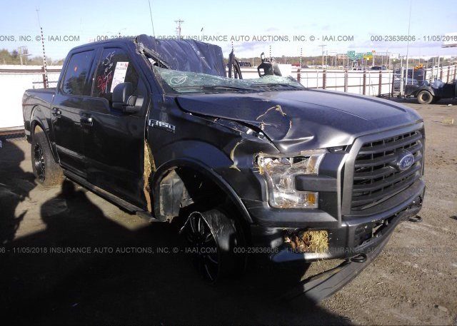 Inventory #370939989 2016 FORD F150