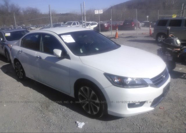 Inventory #969810242 2014 Honda ACCORD