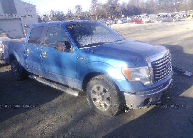 Inventory #486971161 2010 FORD F150