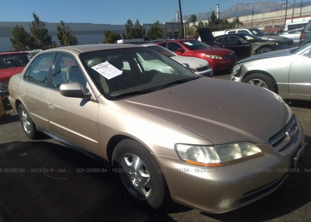 Inventory #596432393 2002 Honda ACCORD