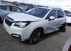 2018 Subaru FORESTER - JF2SJAWC5JH456268 Right View