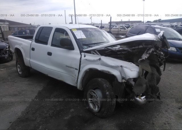 Inventory #562904233 2000 Dodge DAKOTA
