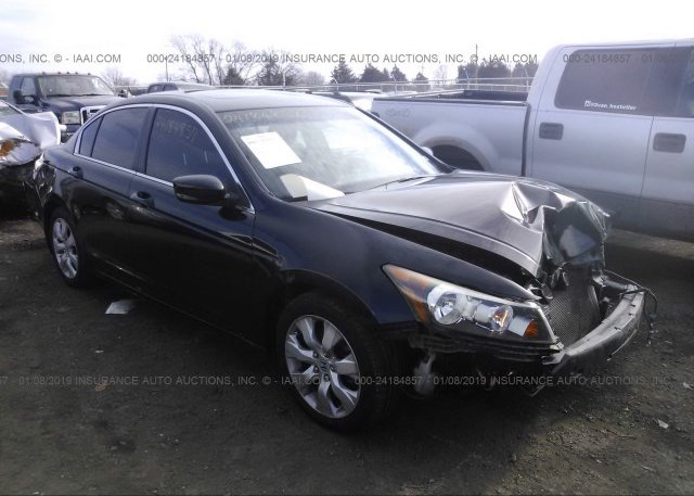 Inventory #525257131 2009 Honda ACCORD