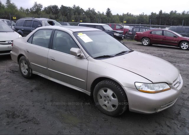 Inventory #525009226 2001 Honda ACCORD