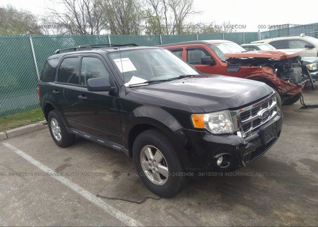 Inventory #175232980 2010 FORD ESCAPE