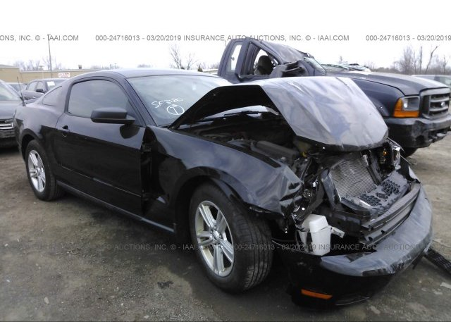 Inventory #279343012 2012 FORD MUSTANG