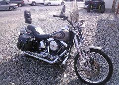 1996 Harley-davidson FXSTS
