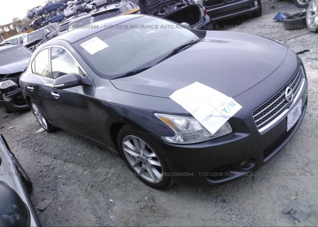 Inventory #421097926 2011 Nissan MAXIMA