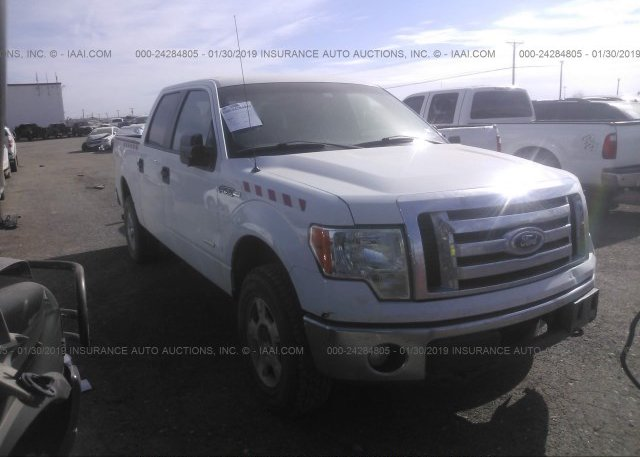 Inventory #394418536 2011 FORD F150