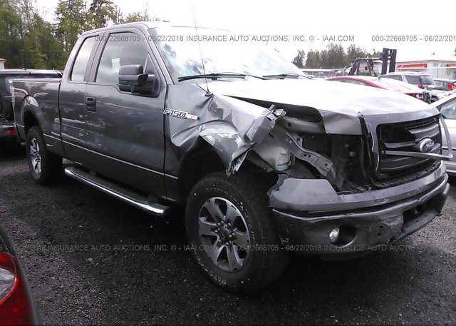 Inventory #822551532 2013 FORD F150