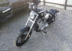 2005 Harley-davidson XL883
