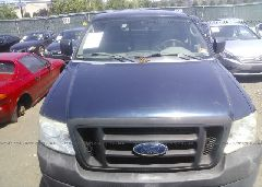 2005 FORD F150 - 1FTRF12225NA64660 detail view