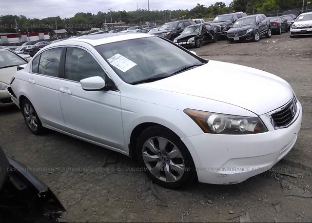 Inventory #540137367 2008 Honda ACCORD