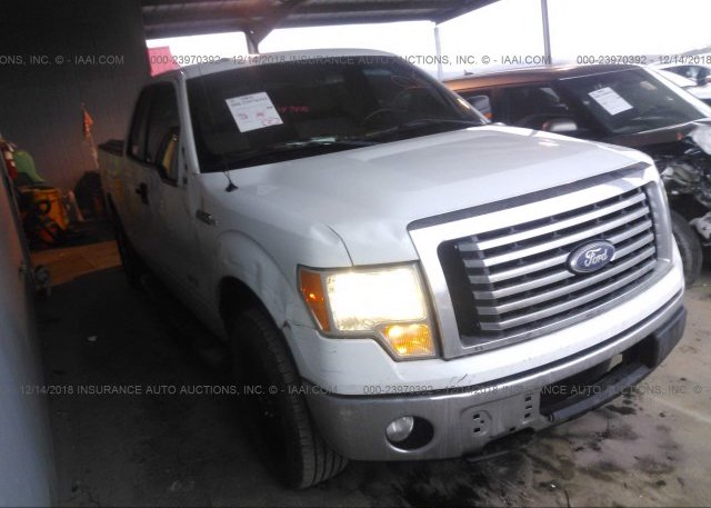 Inventory #293206374 2011 FORD F150