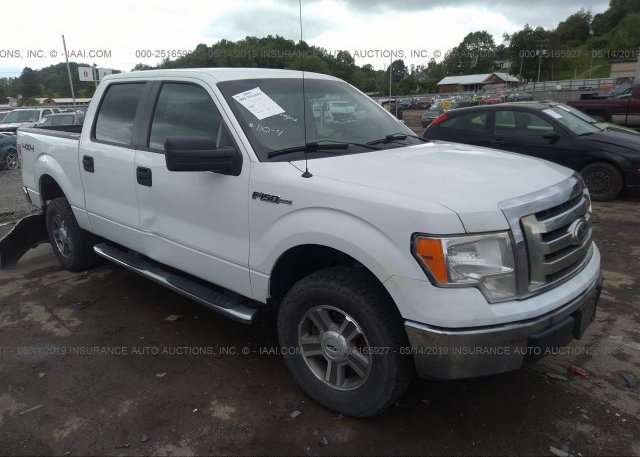 Inventory #300896313 2010 FORD F150