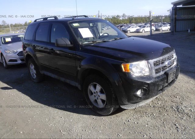Inventory #790662405 2011 FORD ESCAPE