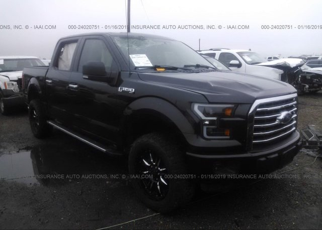 Inventory #363137781 2015 FORD F150
