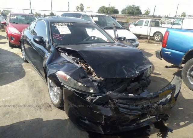 Inventory #947564025 2011 Honda ACCORD