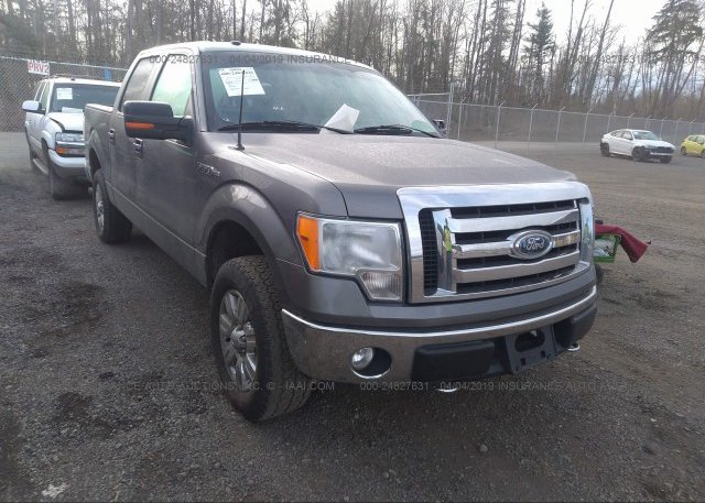 Inventory #685788784 2009 FORD F150