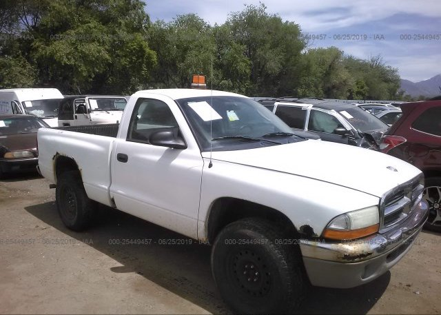 Inventory #897787992 2004 Dodge DAKOTA