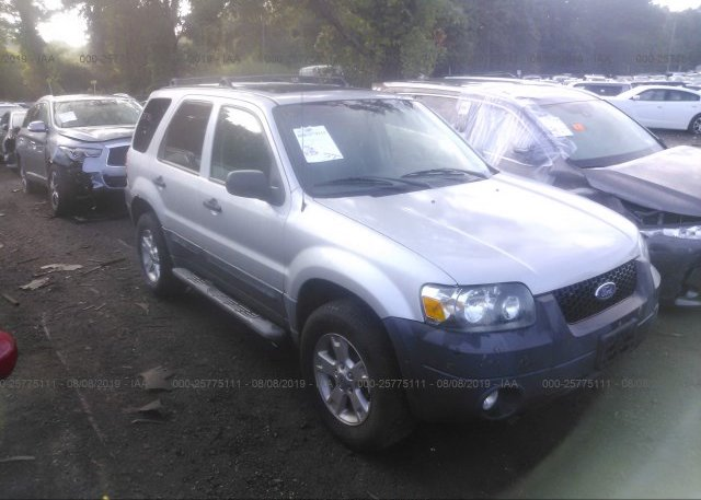 Inventory #304456415 2007 FORD ESCAPE