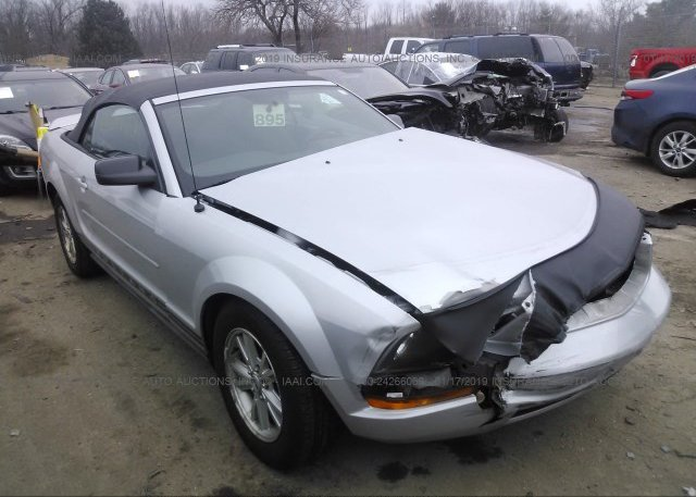 Inventory #203398182 2007 FORD MUSTANG