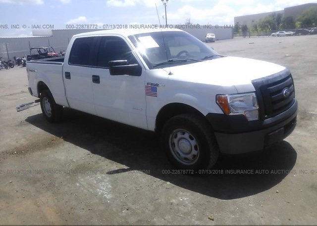 Inventory #454855035 2012 FORD F150