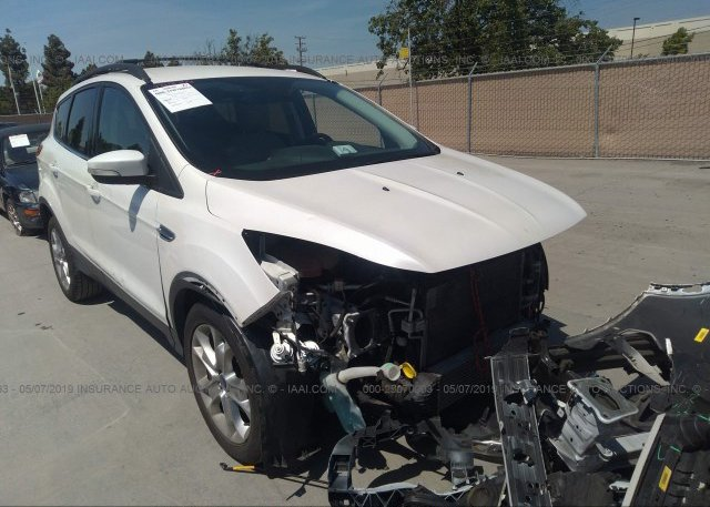 Inventory #228325456 2013 FORD ESCAPE